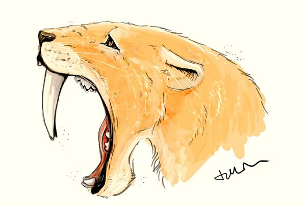 Smilodon opening wide. The cat could open its jaws to 120º (Painting by Tabitha Paterson)