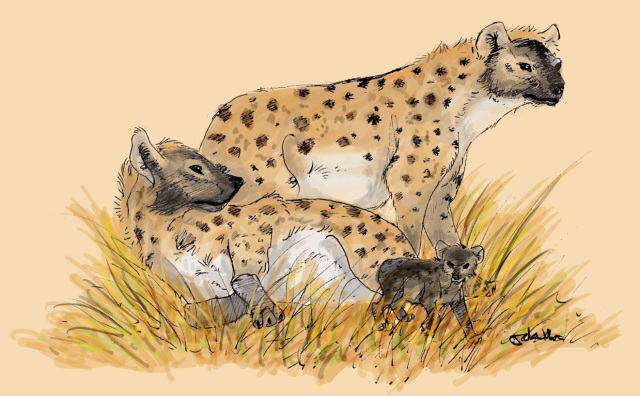 A family of hyenas.
