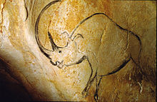 A glorious cave painting of a woolly rhinoeros. (Image from here)