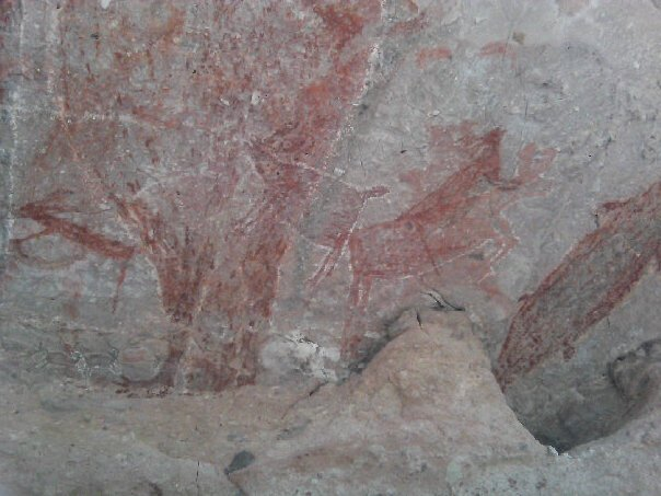 Beautiful cave art from Baja (Image from here)