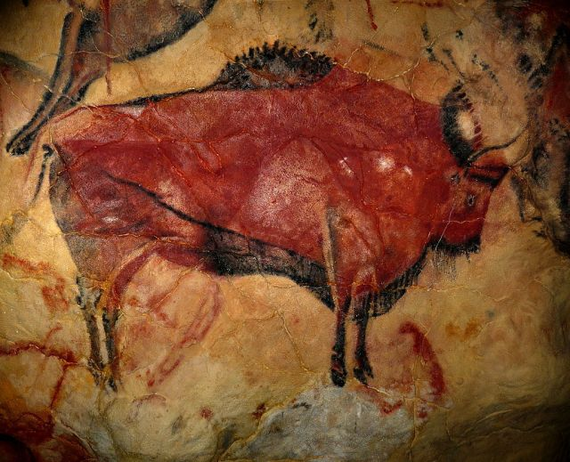 Beautiful cave painting of the magnificent steppe bison, Bison priscus. (Image from here)
