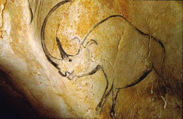 A painting of a woolly rhinoceros from Chauvet Cave, France. (Image from here)