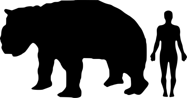 Compared to a human, Diprotodon was a pretty big beast! (Image from here)