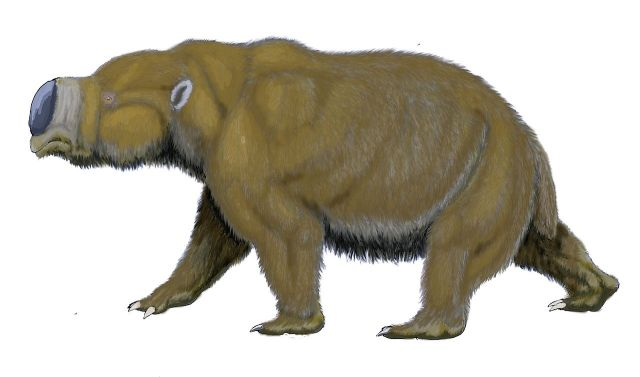 The rather cute looking Diprotodon (Image from here)