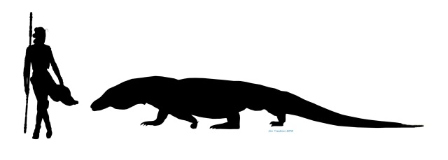 This is a more conservative estimate of Megalania (IMage by Jan Freedman)