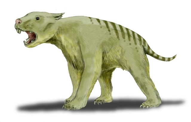 Reconstruction of Thylacoleo by Nobu Tamura via Wikimedia Commons