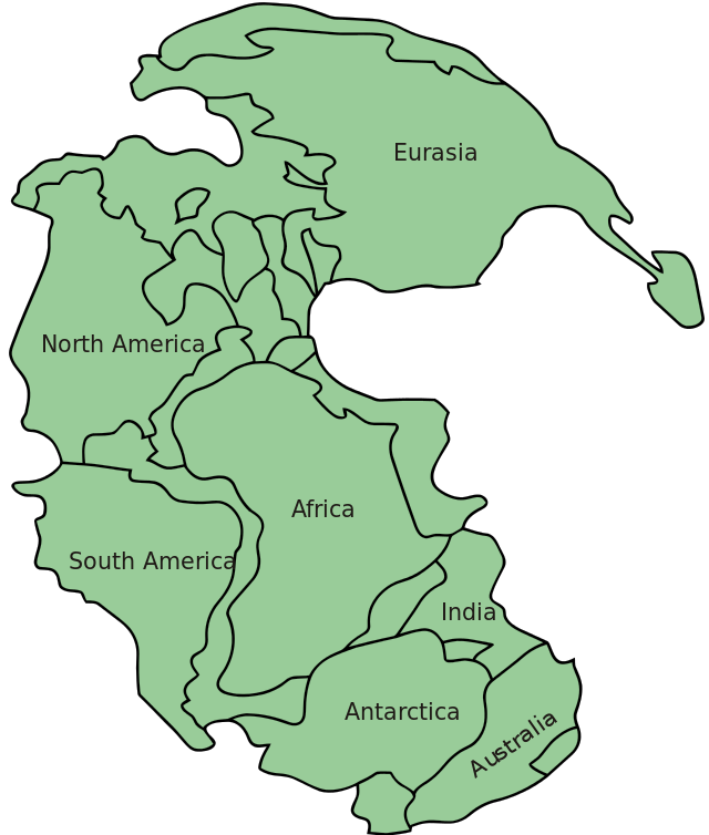Almost all the current continents in one place. The supercontinent, Pangea. (Image from here)