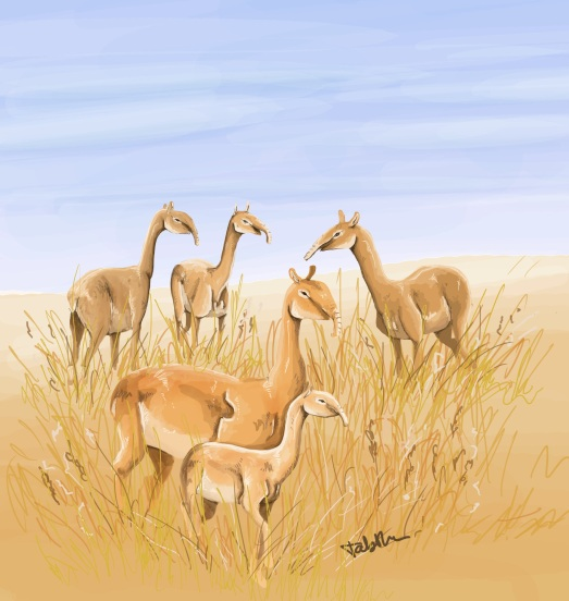 A small herd of the strange looking lip. Art by Tabitha Paterson.