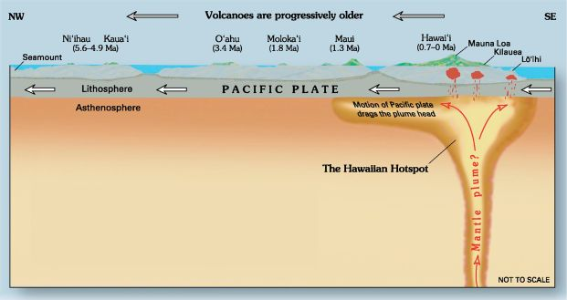 "The neverending magma being pushed out from teh belly of teh Earth. This disagram illustrated (Image from here: ""Hawaii hotspot cross-sectional diagram"" by Joel E. Robinson, USGS. - Cropped from the 108 MB PDF file available here and described here.. Licensed under Public Domain via Wikimedia Commons - http://commons.wikimedia.org/wiki/File:Hawaii_hotspot_cross-sectional_diagram.jpg#/media/File:Hawaii_hotspot_cross-sectional_diagram.jpg)"