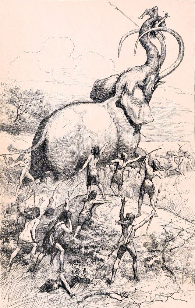 """A Mammoth Hunt"" by J. Steeple Davis - https://archive.org/stream/childrensstories01wrig#page/n9/mode/2up. Licensed under Public Domain via Wikimedia Commons - http://commons.wikimedia.org/wiki/File:A_Mammoth_Hunt.jpg#/media/File:A_Mammoth_Hunt.jpg"