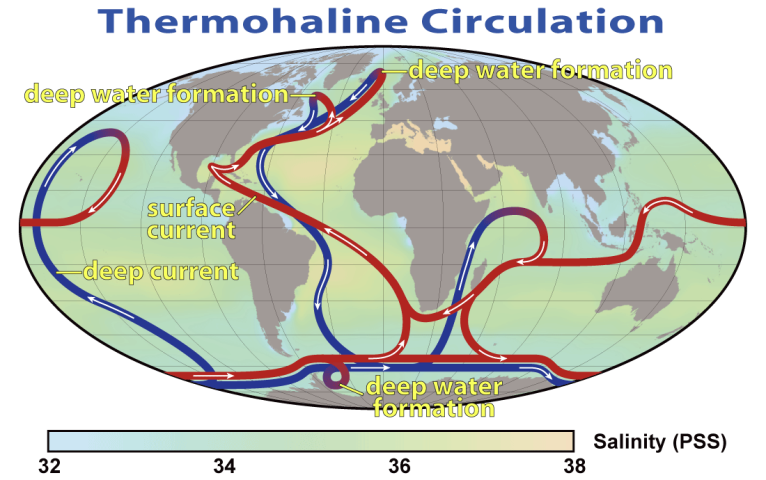 "Unseen by us are warm and cold currents traveling around the planet in the oceans. (Image by ""Thermohaline Circulation 2"" by Robert Simmon, NASA. Minor modifications by Robert A. Rohde also released to the public domain - NASA Earth Observatory. Licensed under Public Domain via Wikimedia Commons - https://commons.wikimedia.org/wiki/File:Thermohaline_Circulation_2.png#/media/File:Thermohaline_Circulation_2.png"