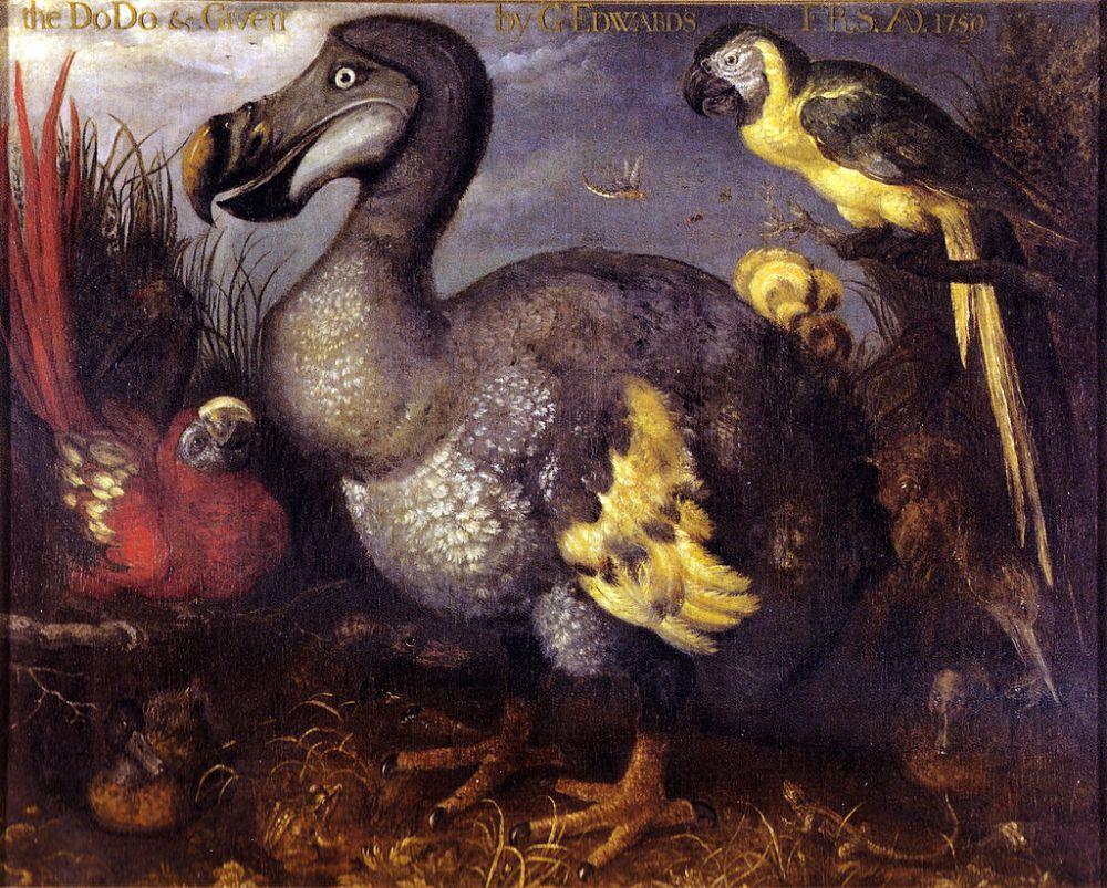 The last squawk of the dodo (1/5)