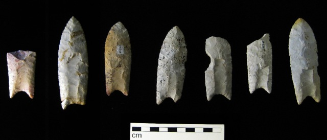 Clovis points from the Rummells-Maske Site, 13CD15, Cedar County, Iowa. Image by Bill Whttaker from Wikimedia Commons