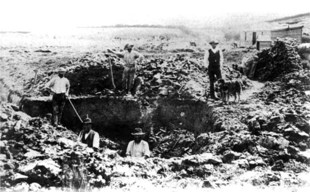 "Some Victorian New Zealanders ""excavating"" a moa swamp. The bones are piled all about. Public Domain Image via Wikimedia Commons"