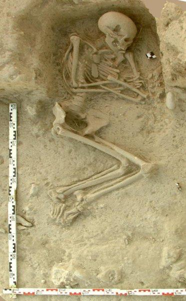 Human skeleton from an archaeological excavation in Northern Greece (Paliambela Excavation Project Archive - credit K. Kotsakis and P.Halstead).