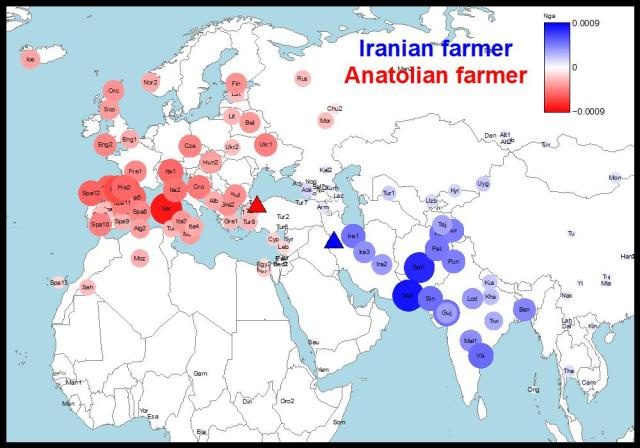 Ancient DNA from human remains in Iran (blue) and Anatolia (red) show very different genetic affinities to modern day populations suggesting multiple origins for farming and evidence of an eastwards expansion (adapted from Broushaki et al. 2016).