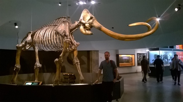 The enormous Columbian Mammoth on display at La Brea, pulls the visitors away from other displays. Author for scale. (Image, authors own.)