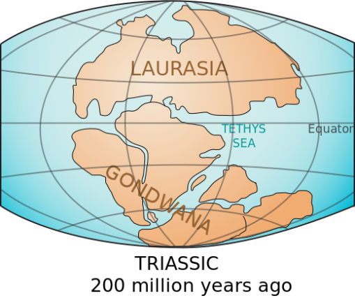 The two major landmasses Laurasia in the north, and Gondwana in the South, around 200 years ago. (Image from here.)